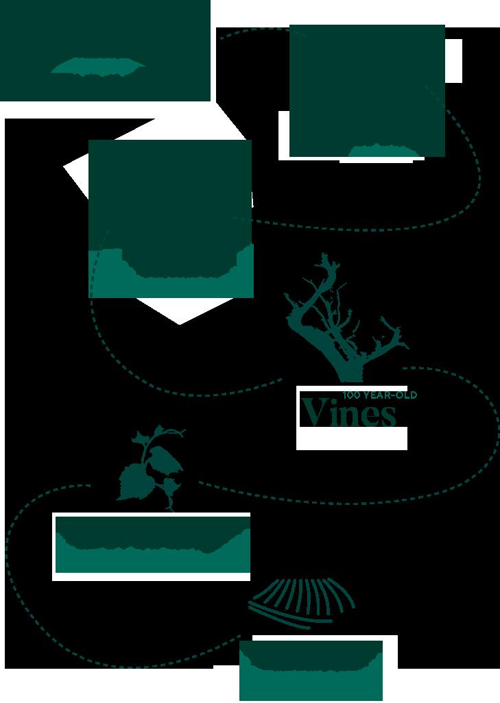infografia Bodegas Martinez Corta